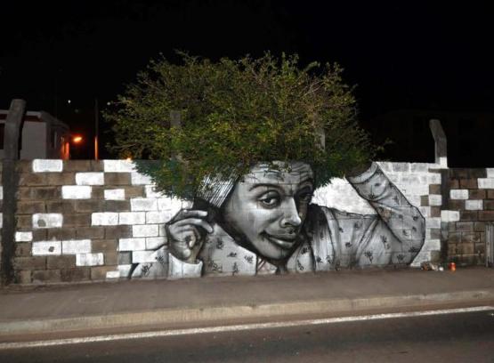 afro_tree